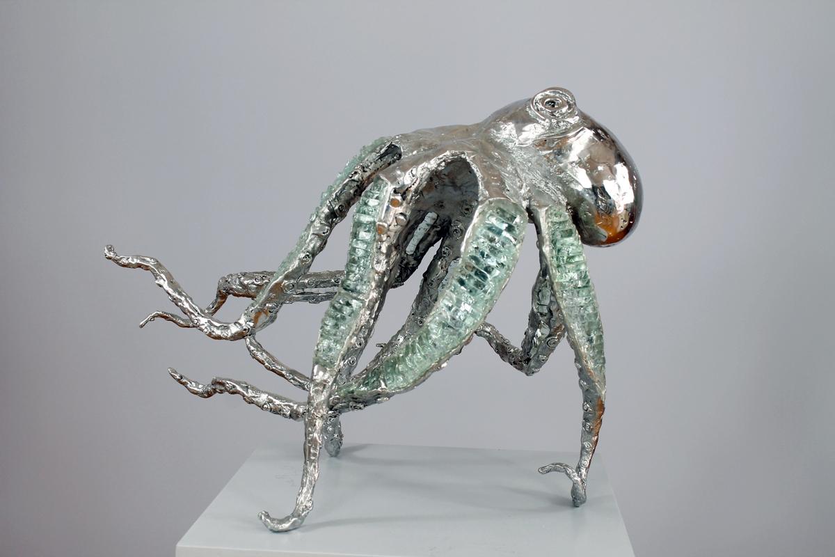Octopus S1